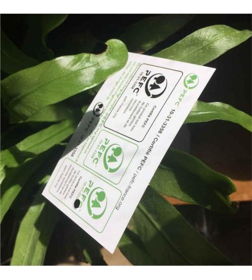 Hang tags personnalisés sur papier certifié PEFC™